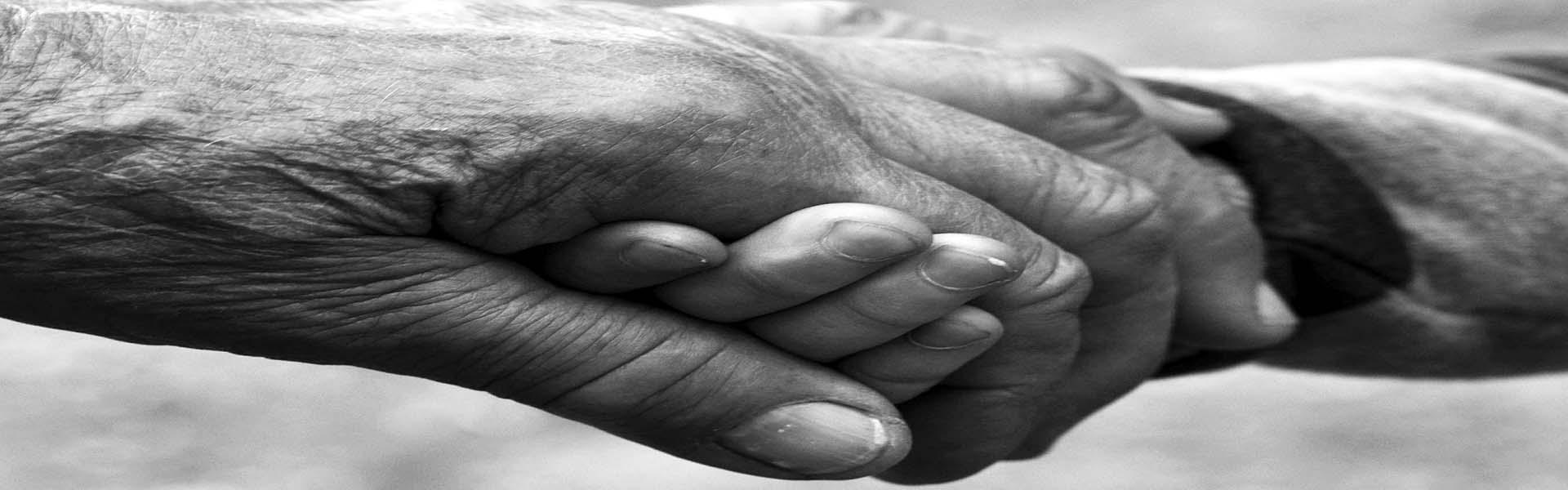 Erindringer kan føres 14 generationer tilbage