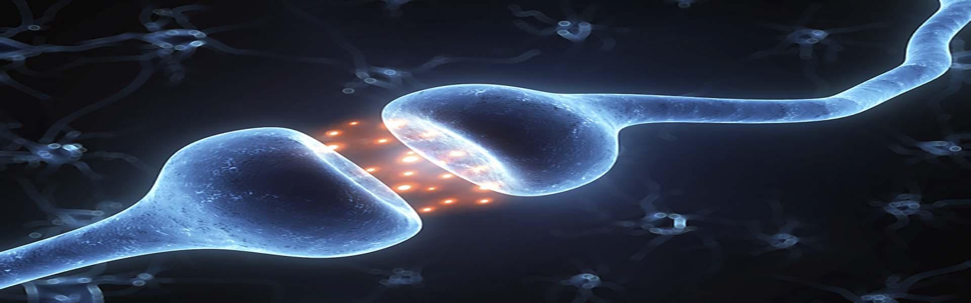 Epigenetik og familieopstilling
